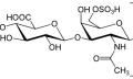 Chondroitin sulfát na bolavé klouby