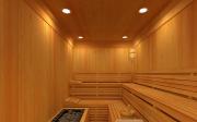 Sauna proti svrabu