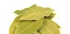Mast zbobkového listu