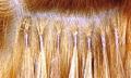 Prodloužení vlasů